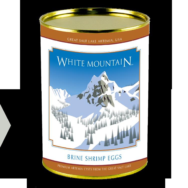 WHITE MT